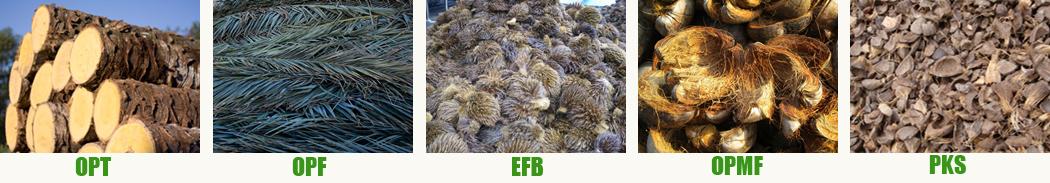 oil palm biomass waste