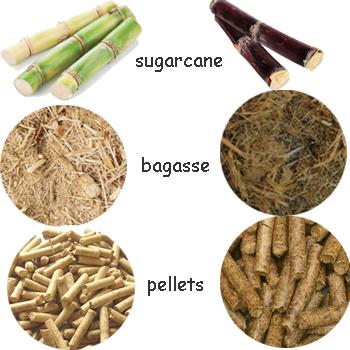 sugarcane bagasse pellets