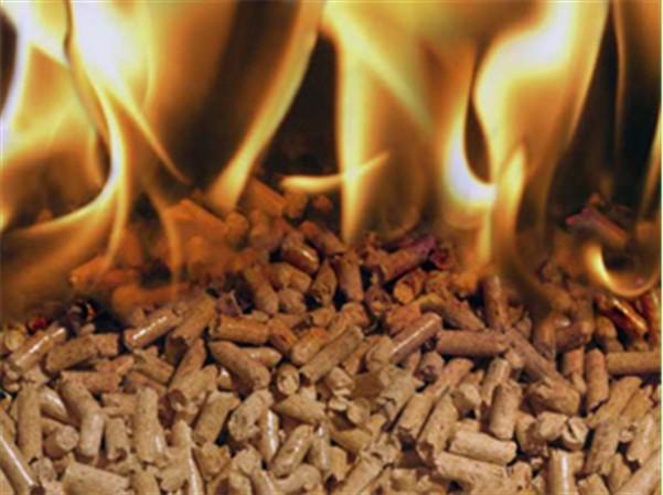 bagasse pellet use