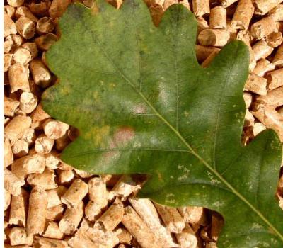 how to make leaf pellets
