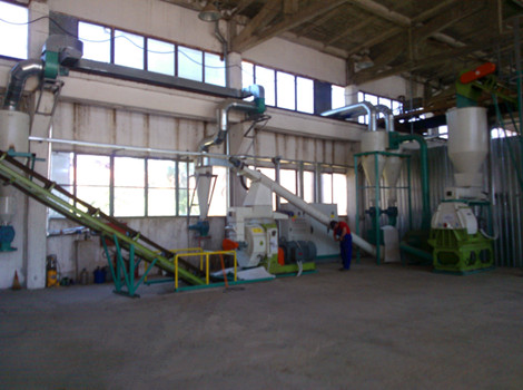 1.5T/H Palm Waste Biomass Pellet Plant