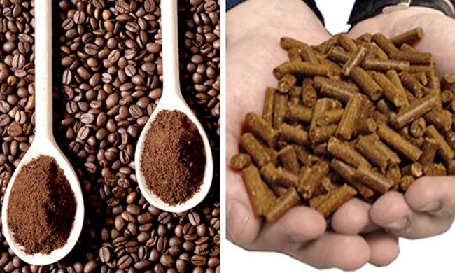 coffee grounds and coffee ground pellet