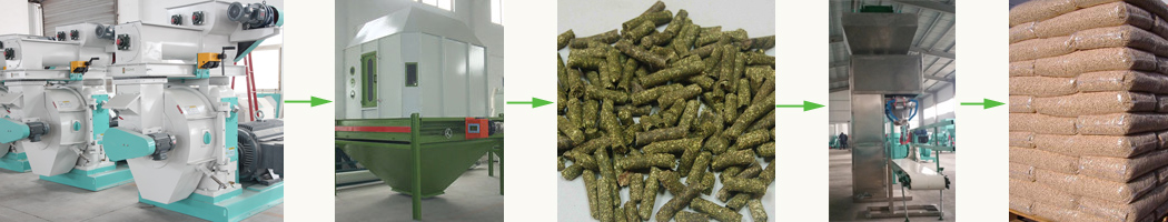 giant king grass pelletizing,cooling,packing