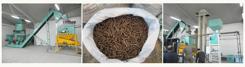 olive pomace pellet cooling and packing